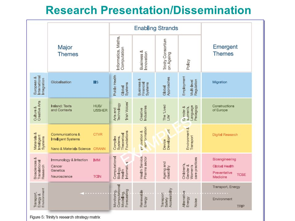 Research Presentation/Dissemination