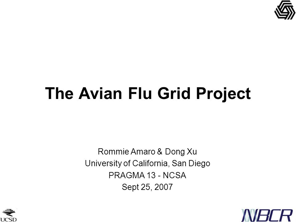 The Avian Flu Grid Project Rommie Amaro & Dong Xu University of California, San Diego PRAGMA 13 - NCSA Sept 25, 2007