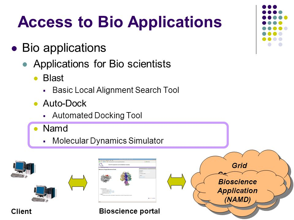 Access to Bio Applications Bio applications Applications for Bio scientists Blast Basic Local Alignment Search Tool Auto-Dock Automated Docking Tool Namd Molecular Dynamics Simulator Grid Computing Bioscience Application (NAMD) Bioscience Application (NAMD) Client Bioscience portal