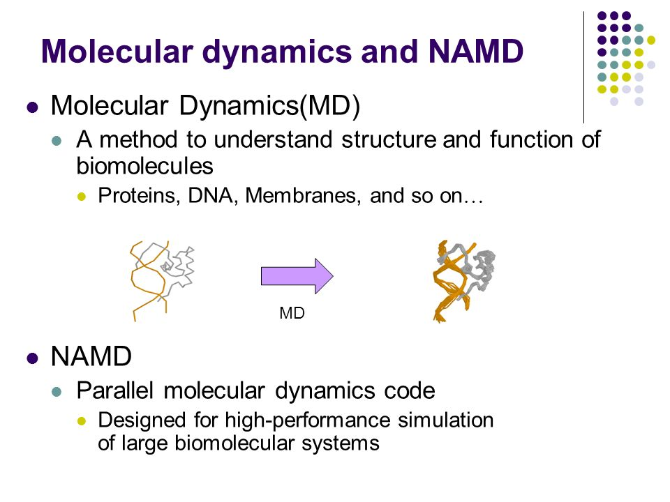 Molecular dynamics and NAMD Molecular Dynamics(MD) A method to understand structure and function of biomolecules Proteins, DNA, Membranes, and so on … NAMD Parallel molecular dynamics code Designed for high-performance simulation of large biomolecular systems MD
