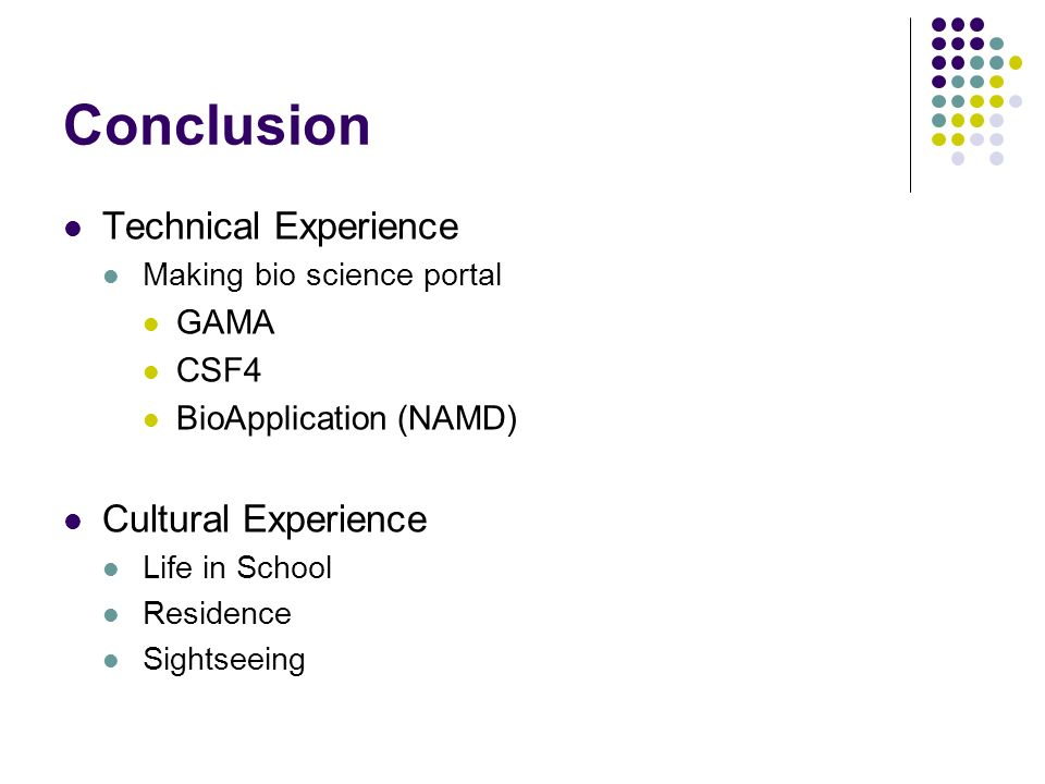 Conclusion Technical Experience Making bio science portal GAMA CSF4 BioApplication (NAMD) Cultural Experience Life in School Residence Sightseeing
