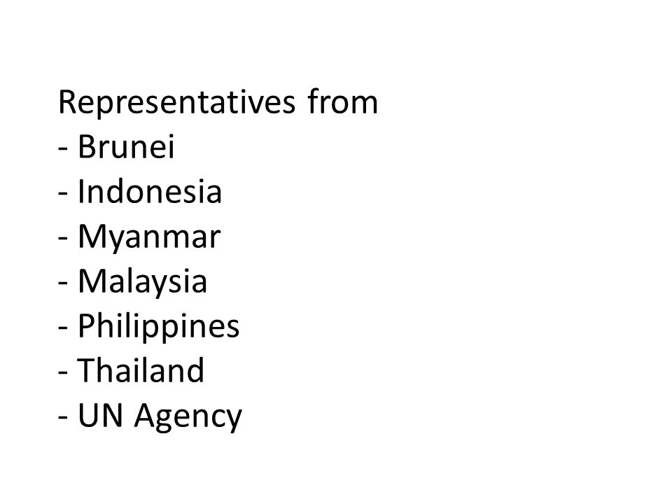 Representatives from - Brunei - Indonesia - Myanmar - Malaysia - Philippines - Thailand - UN Agency