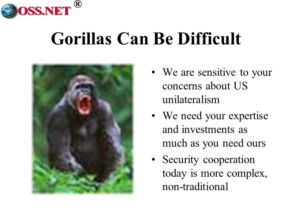 ® Gorillas Can Be Difficult We are sensitive to your concerns about US unilateralism We need your expertise and investments as much as you need ours Security cooperation today is more complex, non-traditional