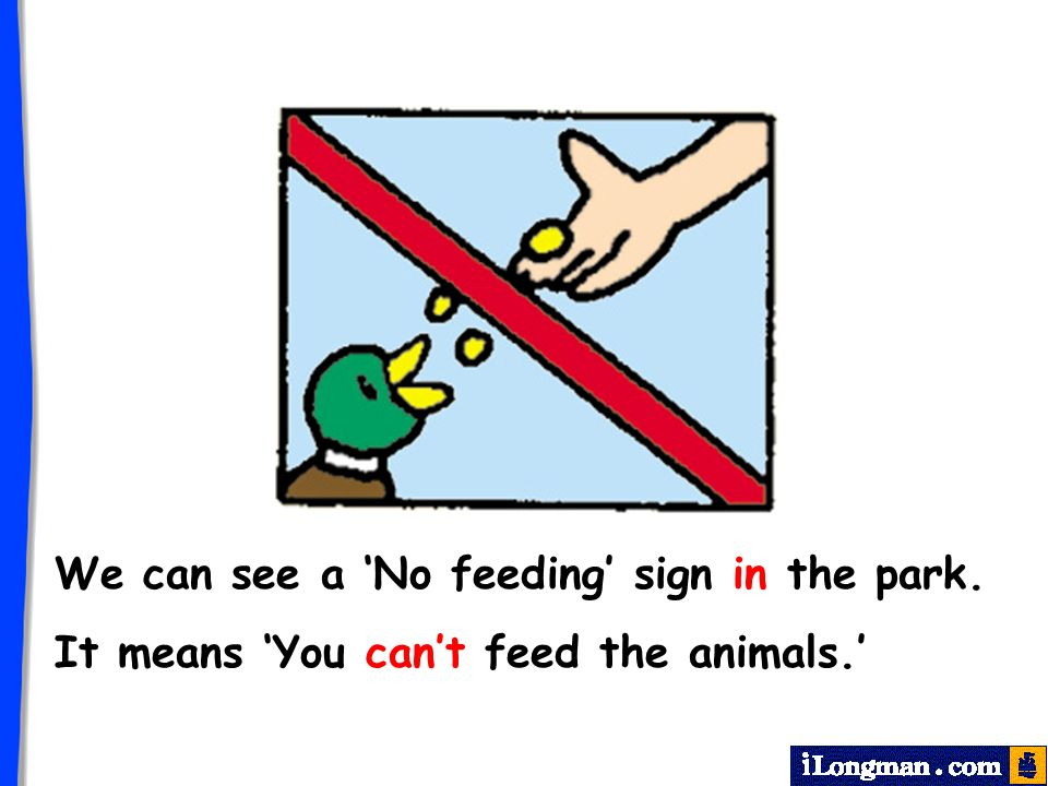 It means You cant feed the animals. We can see a No feeding sign in the park.