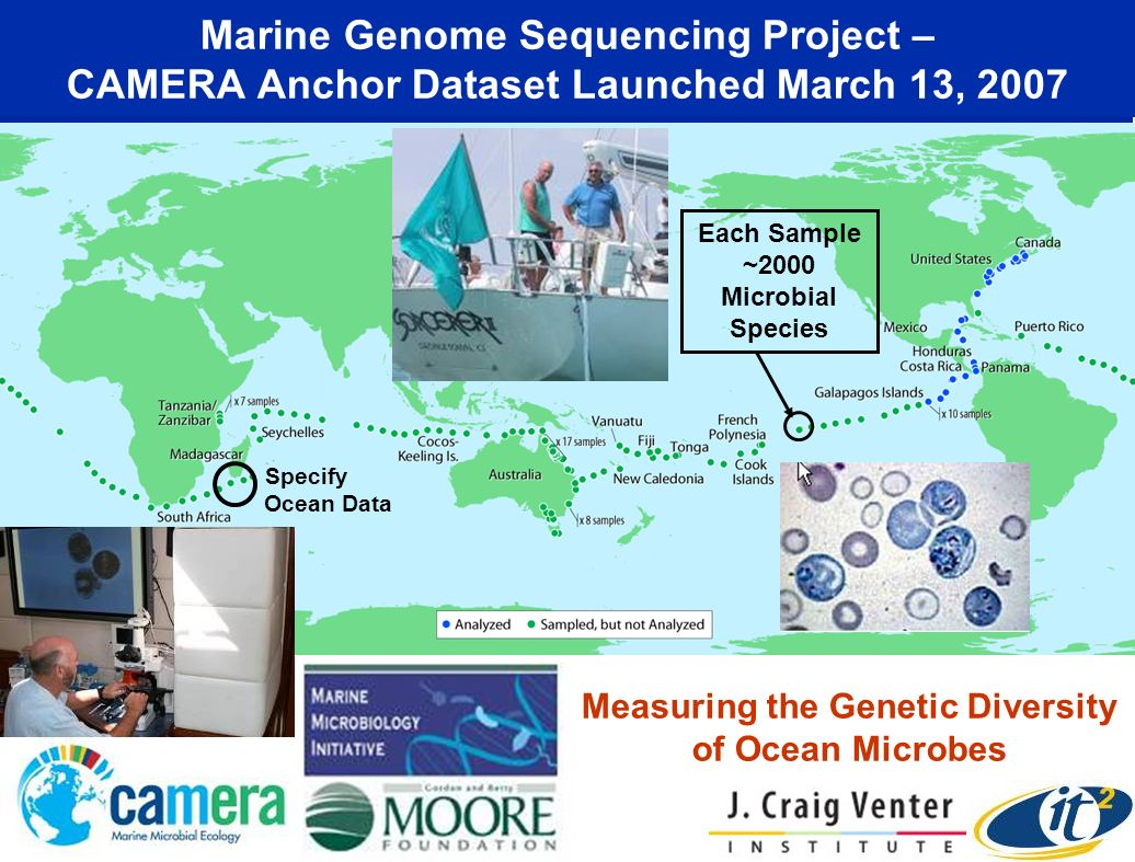 Marine Genome Sequencing Project – CAMERA Anchor Dataset Launched March 13, 2007 Measuring the Genetic Diversity of Ocean Microbes Specify Ocean Data Each Sample ~2000 Microbial Species