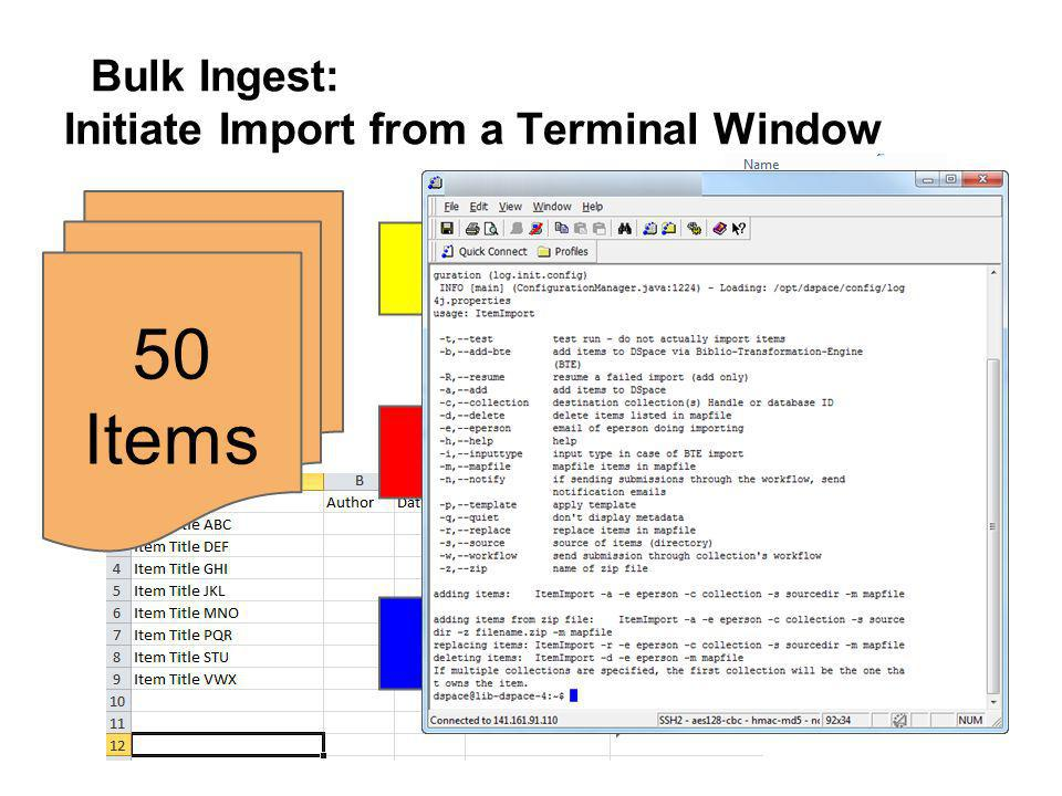 Bulk Ingest: Initiate Import from a Terminal Window 50 Items.TXT.PDF.XML