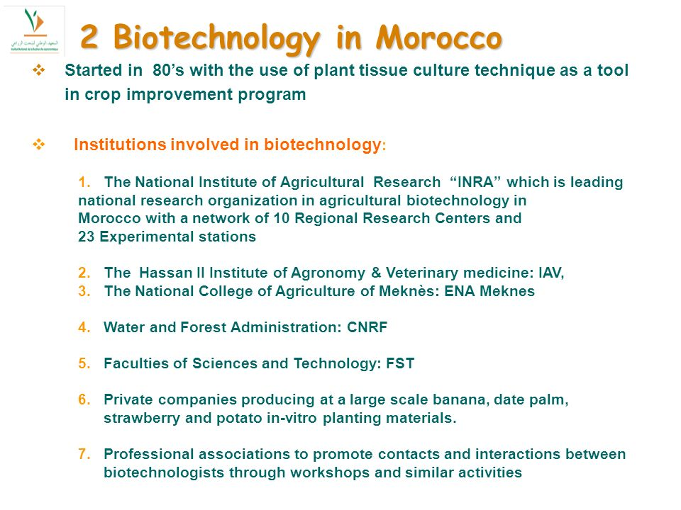 Started in 80s with the use of plant tissue culture technique as a tool in crop improvement program Institutions involved in biotechnology : 1.The National Institute of Agricultural Research INRA which is leading national research organization in agricultural biotechnology in Morocco with a network of 10 Regional Research Centers and 23 Experimental stations 2.The Hassan II Institute of Agronomy & Veterinary medicine: IAV, 3.The National College of Agriculture of Meknès: ENA Meknes 4.Water and Forest Administration: CNRF 5.Faculties of Sciences and Technology: FST 6.Private companies producing at a large scale banana, date palm, strawberry and potato in-vitro planting materials.