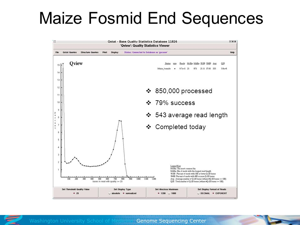 Maize Fosmid End Sequences 850,000 processed 79% success 543 average read length Completed today