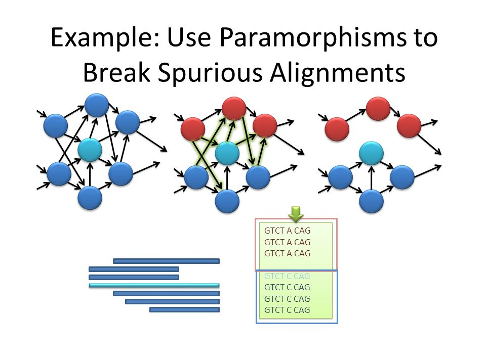 Example: Use Paramorphisms to Break Spurious Alignments GTCT A CAG GTCT C CAG GTCT A CAG GTCT C CAG
