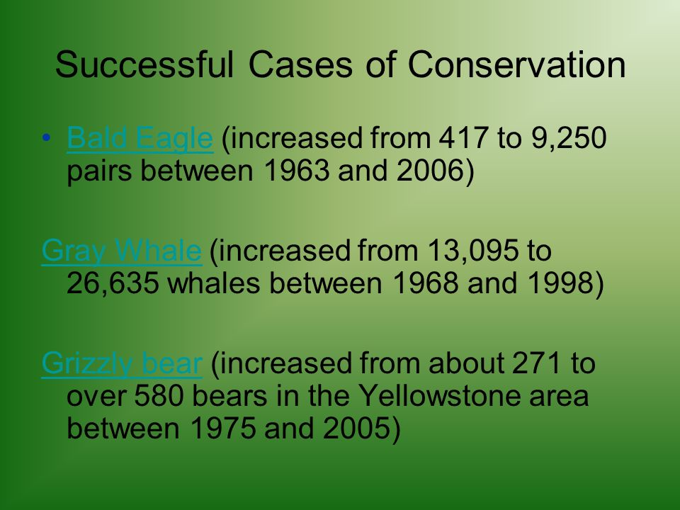 Successful Cases of Conservation Bald Eagle (increased from 417 to 9,250 pairs between 1963 and 2006)Bald Eagle Gray WhaleGray Whale (increased from 13,095 to 26,635 whales between 1968 and 1998) Grizzly bearGrizzly bear (increased from about 271 to over 580 bears in the Yellowstone area between 1975 and 2005)