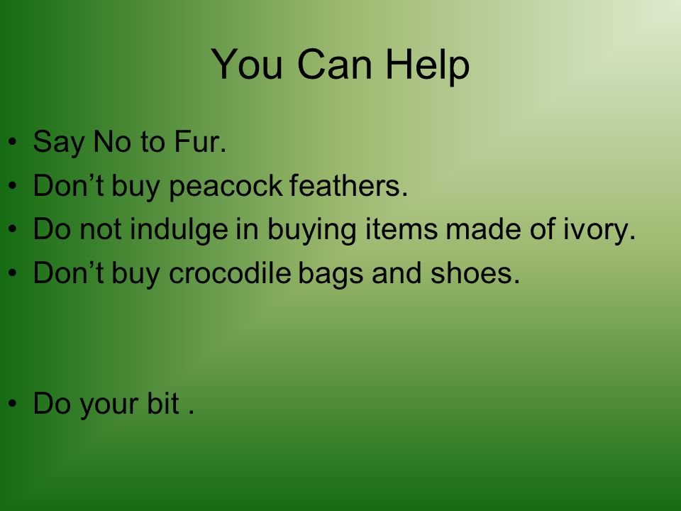 You Can Help Say No to Fur. Dont buy peacock feathers.