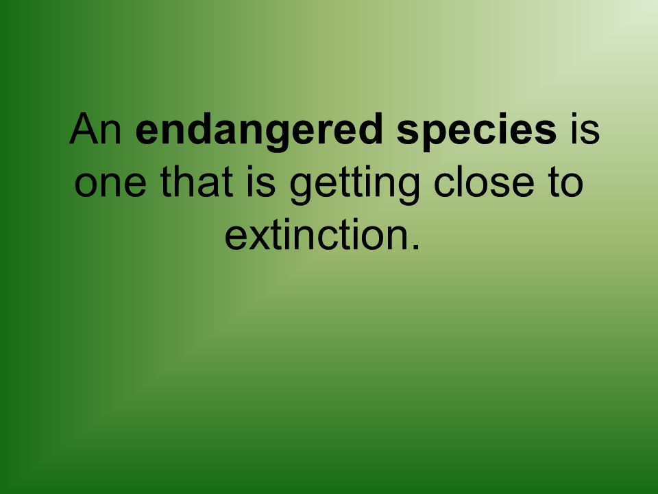 An endangered species is one that is getting close to extinction.