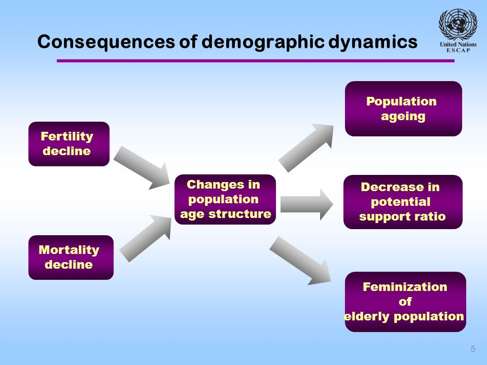 5 Consequences of demographic dynamics Fertility decline Mortality decline Changes in population age structure Population ageing Feminization of elderly population Decrease in potential support ratio