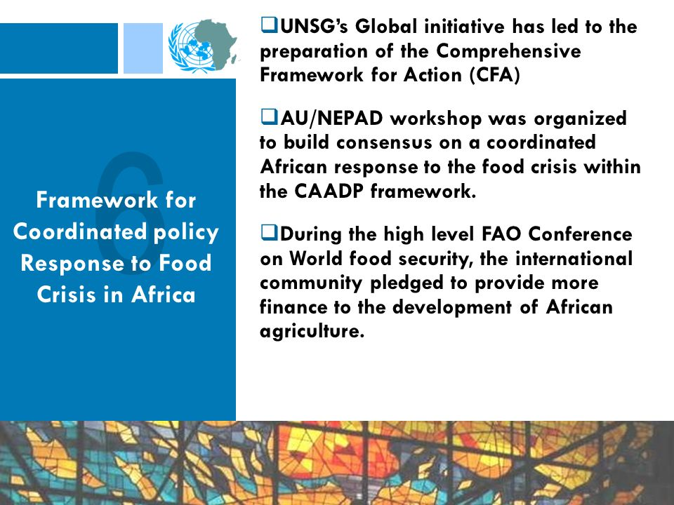 UNSGs Global initiative has led to the preparation of the Comprehensive Framework for Action (CFA) AU/NEPAD workshop was organized to build consensus on a coordinated African response to the food crisis within the CAADP framework.
