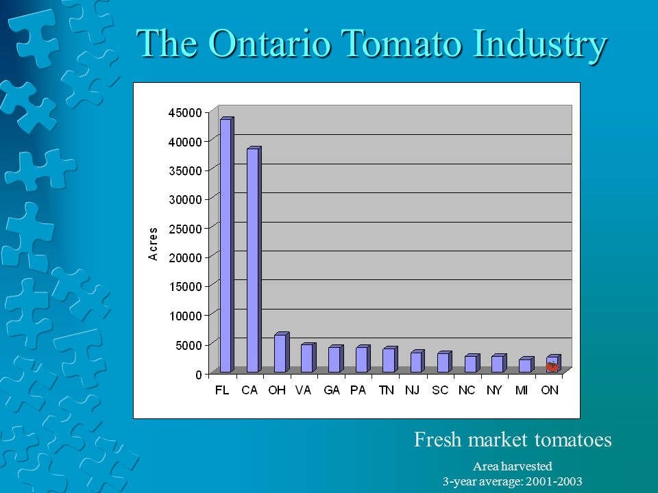 The Ontario Tomato Industry Area harvested 3-year average: 2001-2003 Fresh market tomatoes
