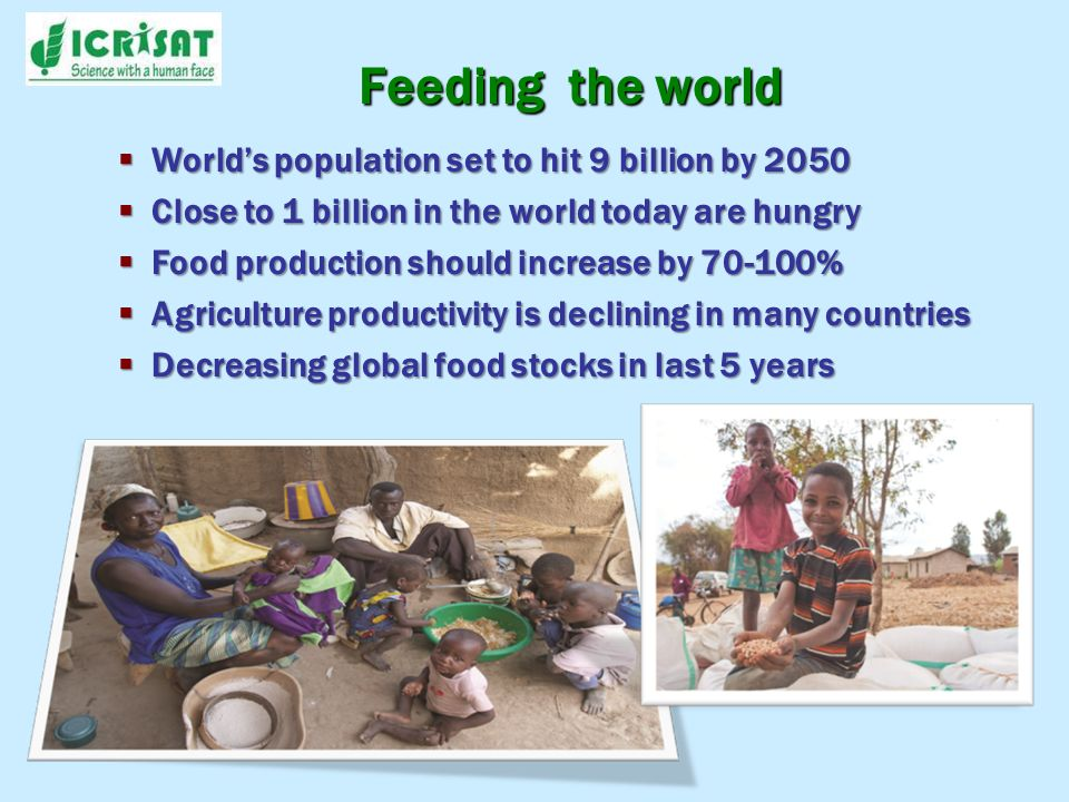 Feeding the world Worlds population set to hit 9 billion by 2050 Worlds population set to hit 9 billion by 2050 Close to 1 billion in the world today are hungry Close to 1 billion in the world today are hungry Food production should increase by 70-100% Food production should increase by 70-100% Agriculture productivity is declining in many countries Agriculture productivity is declining in many countries Decreasing global food stocks in last 5 years Decreasing global food stocks in last 5 years