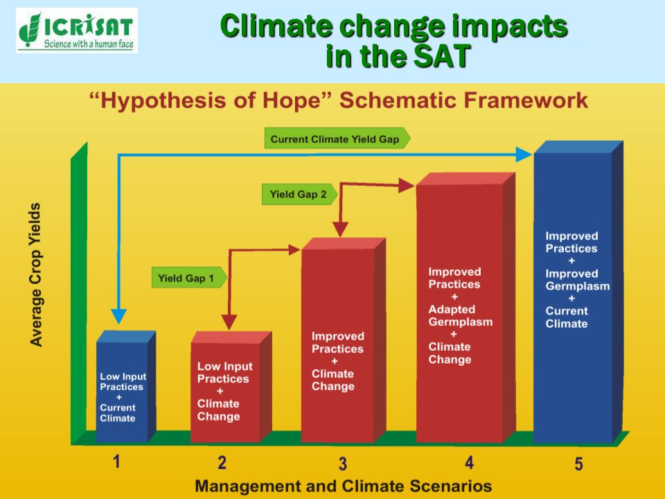 Climate change impacts in the SAT Yield Gap 1 can be mitigated through improved crop and NRM management Yield Gap 2 can be mitigated through variety adaptation to climate change