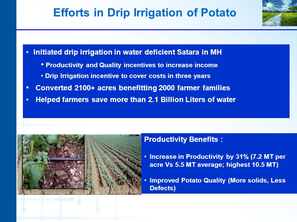 Efforts in Drip Irrigation of Potato Initiated drip irrigation in water deficient Satara in MH Productivity and Quality incentives to increase income Drip Irrigation incentive to cover costs in three years Converted 2100+ acres benefitting 2000 farmer families Helped farmers save more than 2.1 Billion Liters of water Productivity Benefits : Increase in Productivity by 31% (7.2 MT per acre Vs 5.5 MT average; highest 10.5 MT) Improved Potato Quality (More solids, Less Defects)