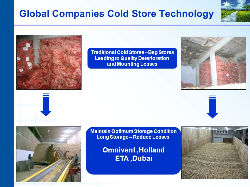 Traditional Cold Stores –Bag Stores Leading to Quality Deterioration and Mounting Losses Global Companies Cold Store Technology Modern Cold Stores- Bulk Stores Maintain Optimum Storage Condition Long Storage – Reduce Losses Omnivent,Holland ETA,Dubai