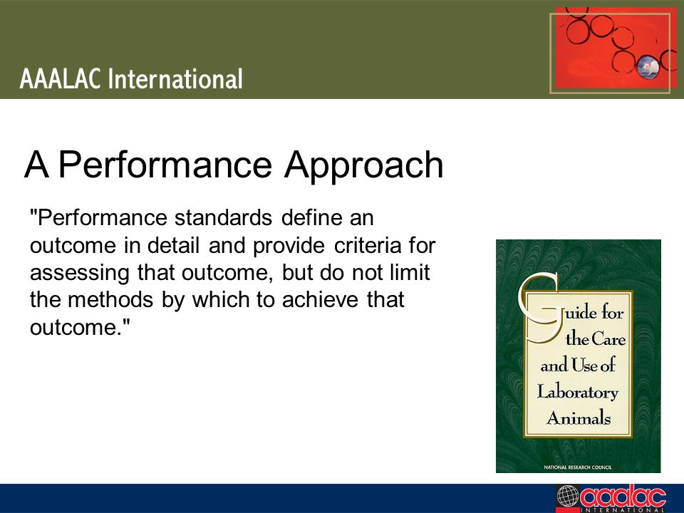 A Performance Approach Performance standards define an outcome in detail and provide criteria for assessing that outcome, but do not limit the methods by which to achieve that outcome.