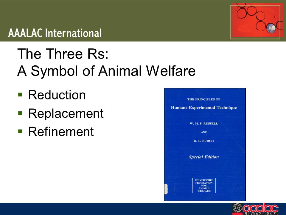 The Three Rs: A Symbol of Animal Welfare Reduction Replacement Refinement