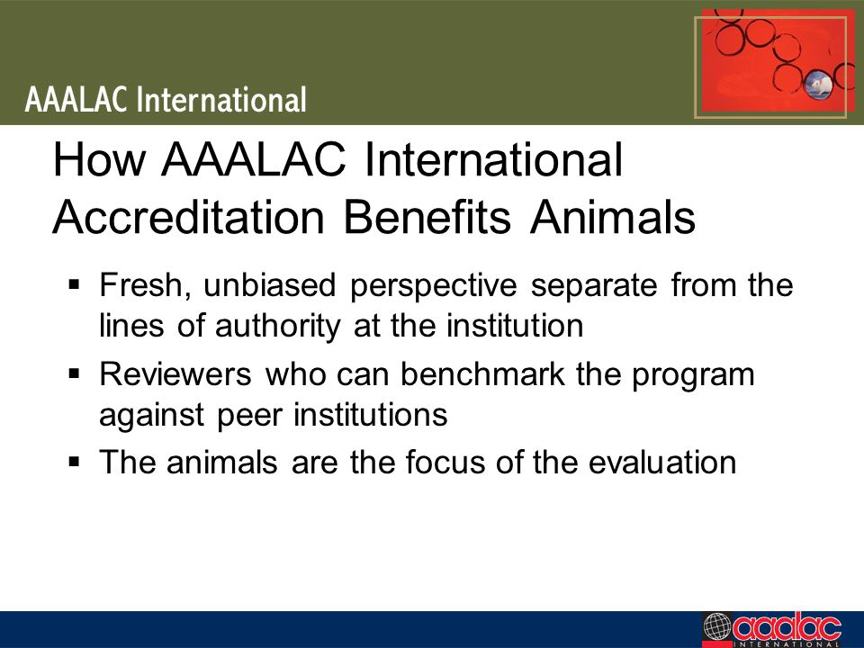 How AAALAC International Accreditation Benefits Animals Fresh, unbiased perspective separate from the lines of authority at the institution Reviewers who can benchmark the program against peer institutions The animals are the focus of the evaluation