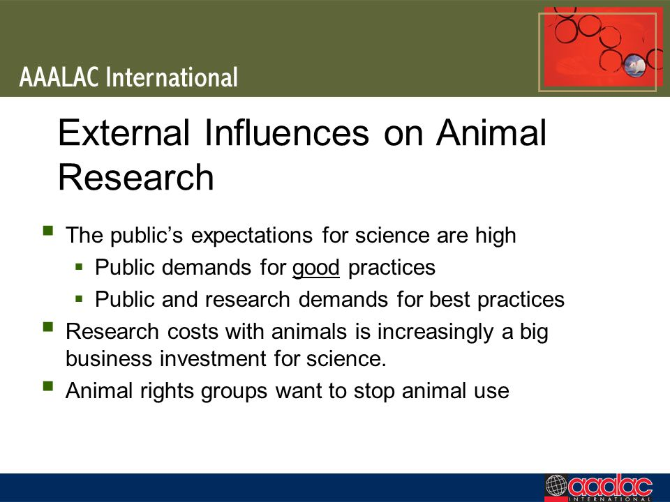 External Influences on Animal Research The publics expectations for science are high Public demands for good practices Public and research demands for best practices Research costs with animals is increasingly a big business investment for science.