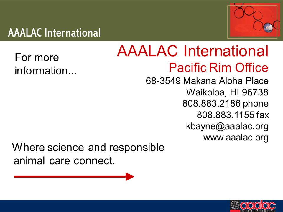 AAALAC International Pacific Rim Office 68-3549 Makana Aloha Place Waikoloa, HI 96738 808.883.2186 phone 808.883.1155 fax kbayne@aaalac.org www.aaalac.org Where science and responsible animal care connect.