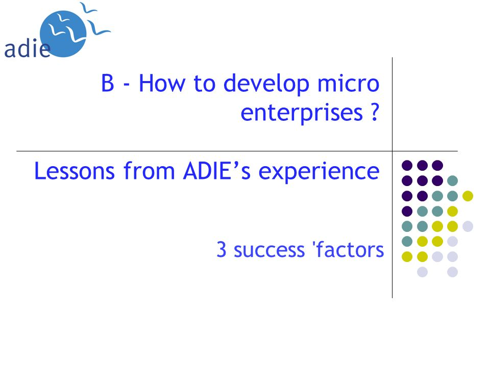 B - How to develop micro enterprises Lessons from ADIEs experience 3 success factors