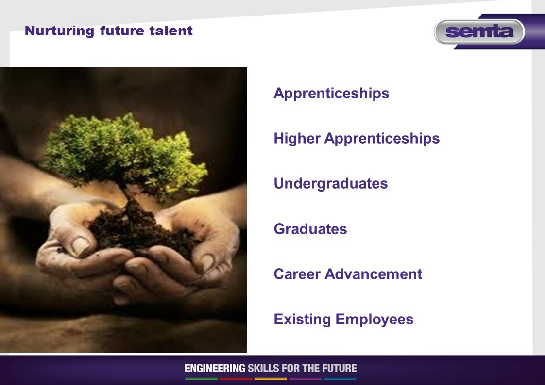Nurturing future talent Apprenticeships Higher Apprenticeships Undergraduates Graduates Career Advancement Existing Employees