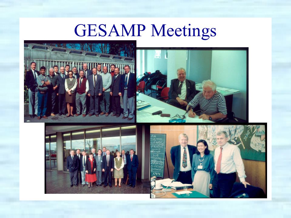 GESAMP Meetings