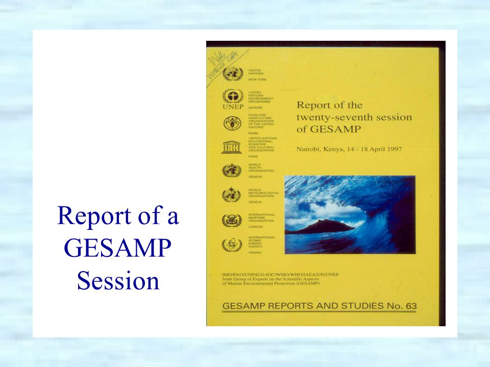 Report of a GESAMP Session