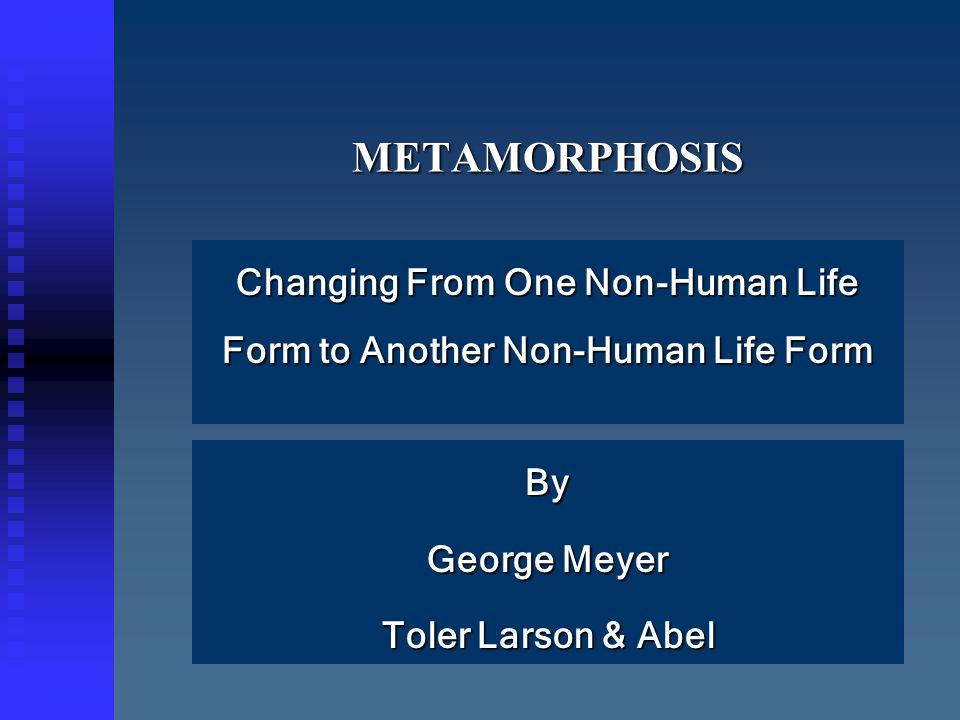 METAMORPHOSISMETAMORPHOSIS Changing From One Non-Human Life Form to Another Non-Human Life Form By George Meyer Toler Larson & Abel