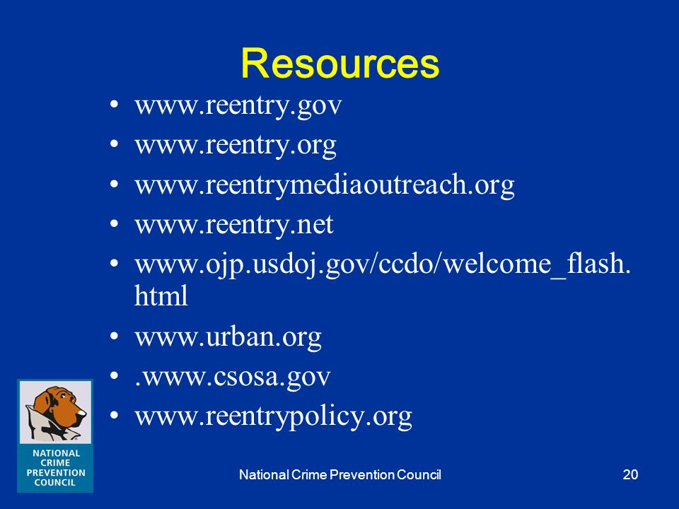 National Crime Prevention Council19 Crime Prevention Strategies Reentry services are crime prevention services.