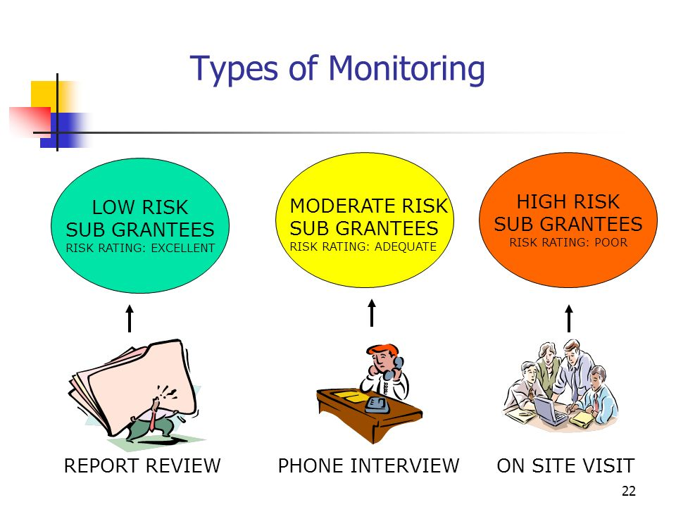 21 Risk-Based Monitoring Summary Develop Monitoring Strategy Determine Areas to Monitor Develop Written Monitoring Plan Educate Sub-grantees Fine-tune Process Conduct Monitoring