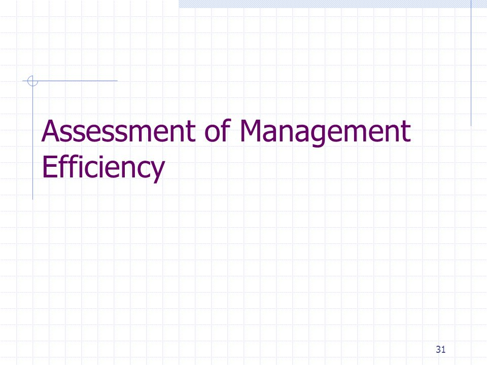 31 Assessment of Management Efficiency