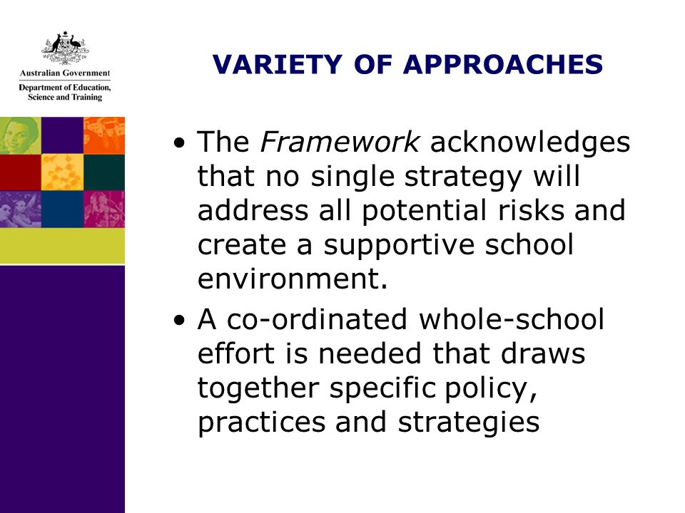 VARIETY OF APPROACHES The Framework acknowledges that no single strategy will address all potential risks and create a supportive school environment.