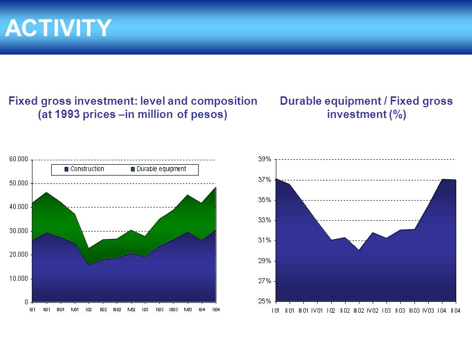 ACTIVITY Fixed gross investment: level and composition (at 1993 prices –in million of pesos) Durable equipment / Fixed gross investment (%)