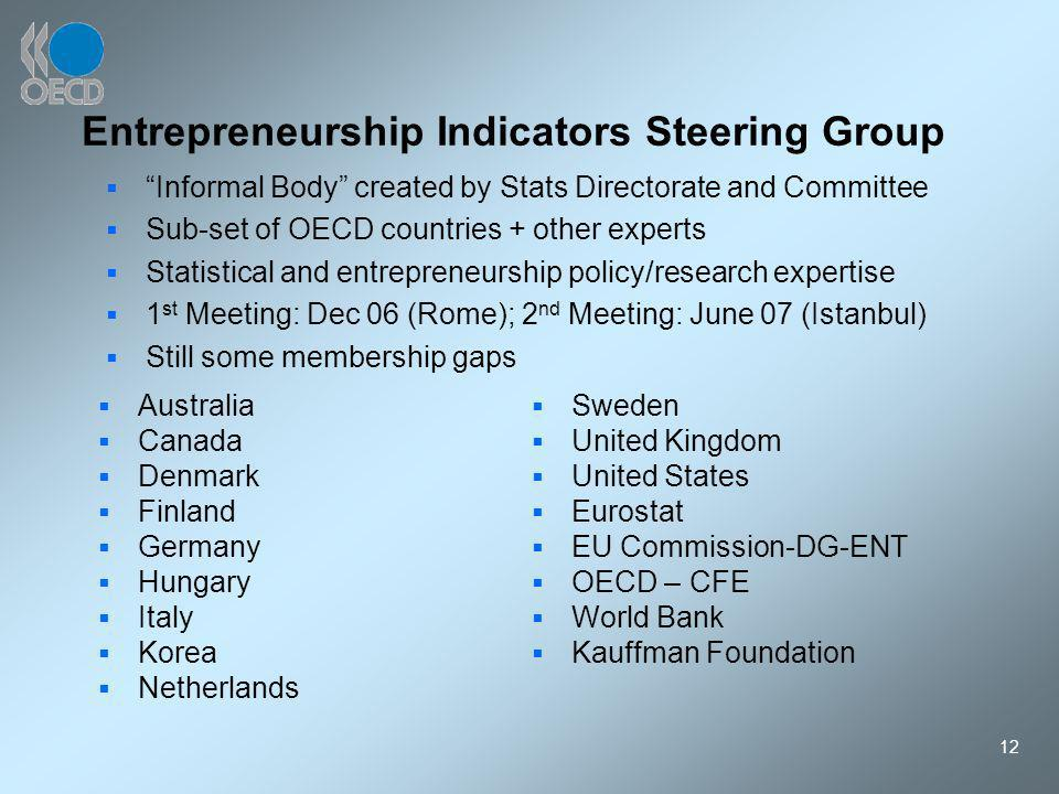 12 Entrepreneurship Indicators Steering Group Australia Canada Denmark Finland Germany Hungary Italy Korea Netherlands Informal Body created by Stats Directorate and Committee Sub-set of OECD countries + other experts Statistical and entrepreneurship policy/research expertise 1 st Meeting: Dec 06 (Rome); 2 nd Meeting: June 07 (Istanbul) Still some membership gaps Sweden United Kingdom United States Eurostat EU Commission-DG-ENT OECD – CFE World Bank Kauffman Foundation