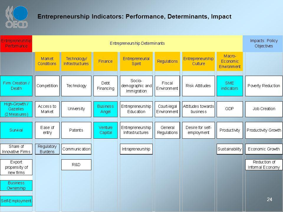 24 Entrepreneurship Indicators: Performance, Determinants, Impact
