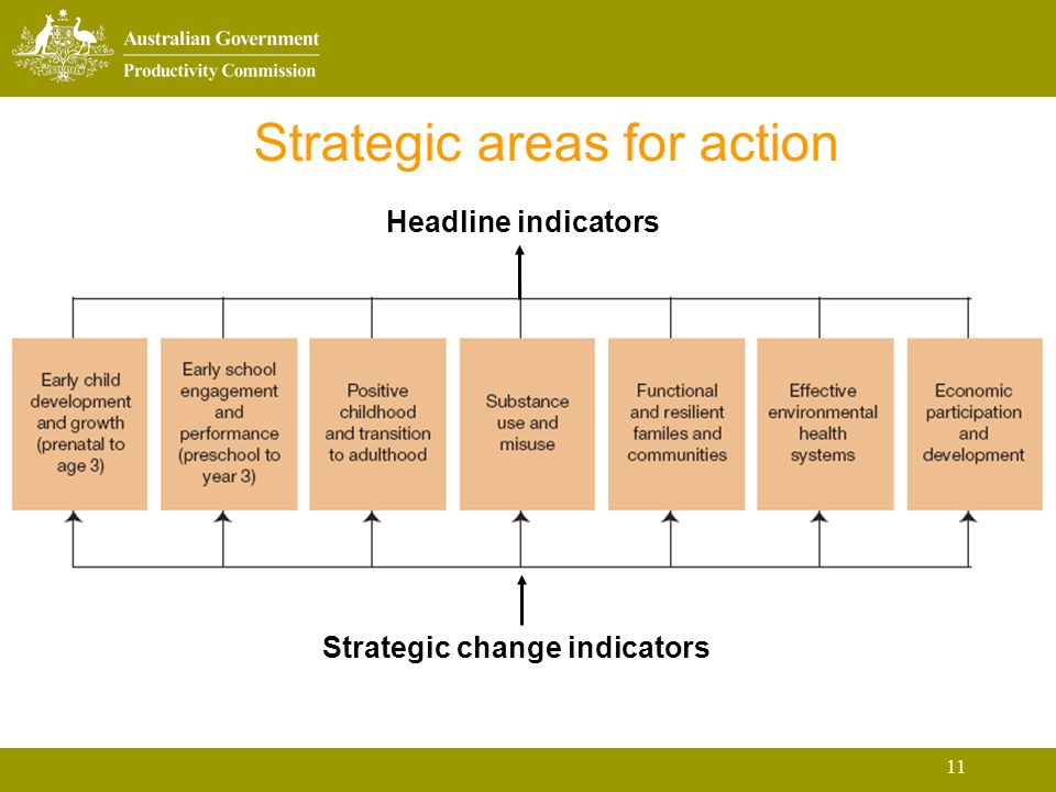11 Strategic areas for action Headline indicators Strategic change indicators