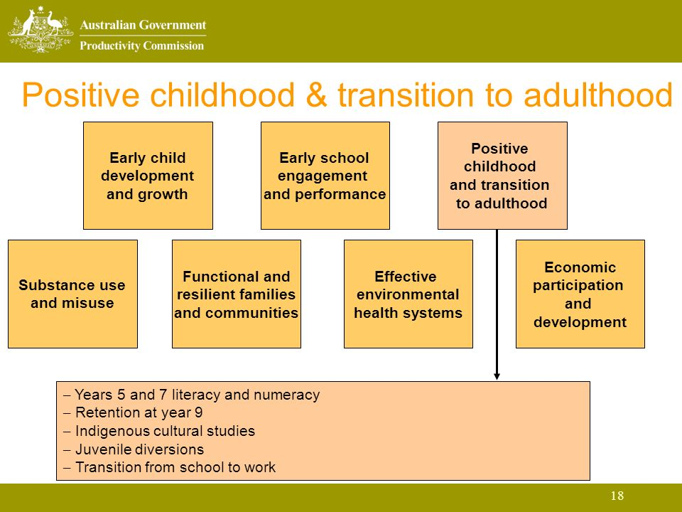 18 Positive childhood & transition to adulthood Early child development and growth Early school engagement and performance Positive childhood and transition to adulthood Substance use and misuse Functional and resilient families and communities Effective environmental health systems Economic participation and development – Years 5 and 7 literacy and numeracy – Retention at year 9 – Indigenous cultural studies – Juvenile diversions – Transition from school to work
