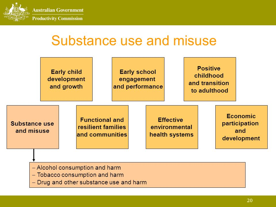 20 Substance use and misuse Early child development and growth Early school engagement and performance Positive childhood and transition to adulthood Substance use and misuse Functional and resilient families and communities Effective environmental health systems Economic participation and development – Alcohol consumption and harm – Tobacco consumption and harm – Drug and other substance use and harm