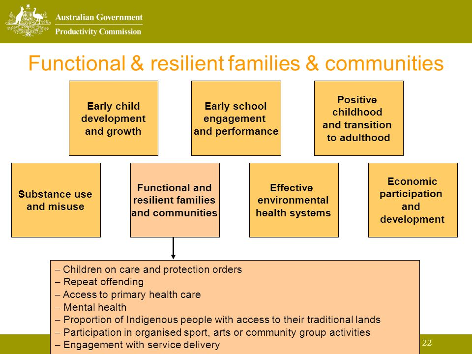 22 Functional & resilient families & communities Early child development and growth Early school engagement and performance Positive childhood and transition to adulthood Substance use and misuse Functional and resilient families and communities Effective environmental health systems Economic participation and development – Children on care and protection orders – Repeat offending – Access to primary health care – Mental health – Proportion of Indigenous people with access to their traditional lands – Participation in organised sport, arts or community group activities – Engagement with service delivery