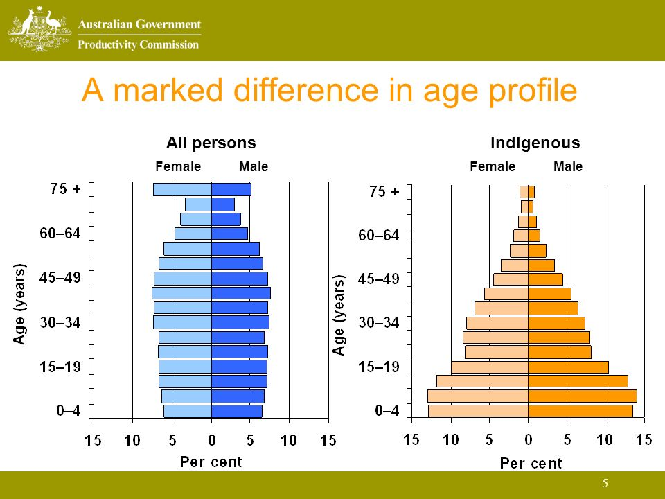 5 A marked difference in age profile All personsIndigenous FemaleMaleFemaleMale