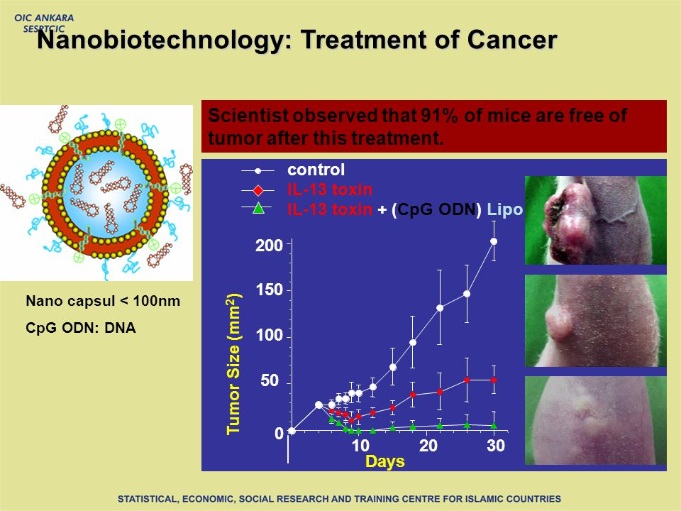 Nanobiotechnology: Treatment of Cancer CpG ODN: DNA Nano capsul < 100nm Days Tumor Size (mm 2 ) IL-13 toxin + (CpG ODN) Lipo IL-13 toxin control Scientist observed that 91% of mice are free of tumor after this treatment.