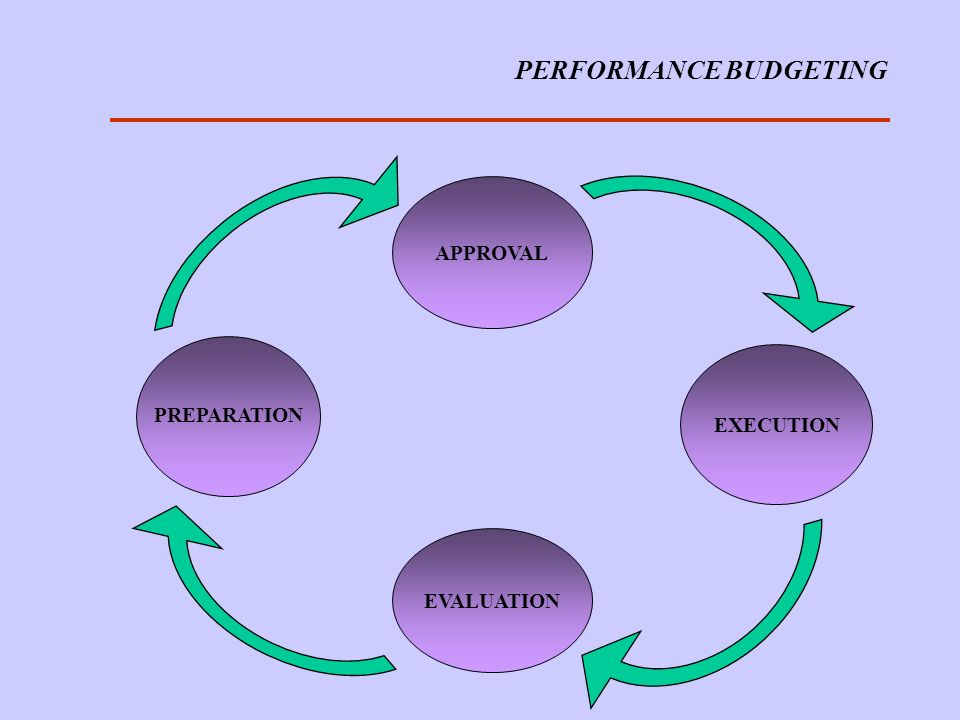 PERFORMANCE BUDGETING PREPARATION APPROVAL EXECUTION EVALUATION