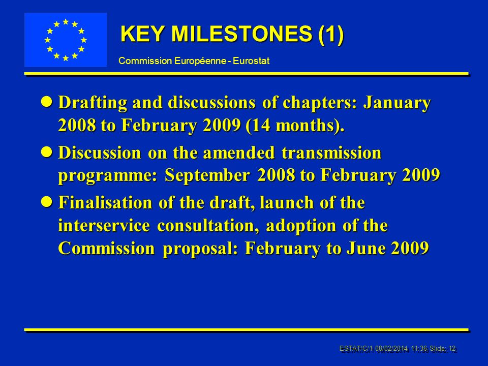 Commission Européenne - Eurostat ESTAT/C/1 08/02/ :37 Slide: 12 KEY MILESTONES (1) lDrafting and discussions of chapters: January 2008 to February 2009 (14 months).