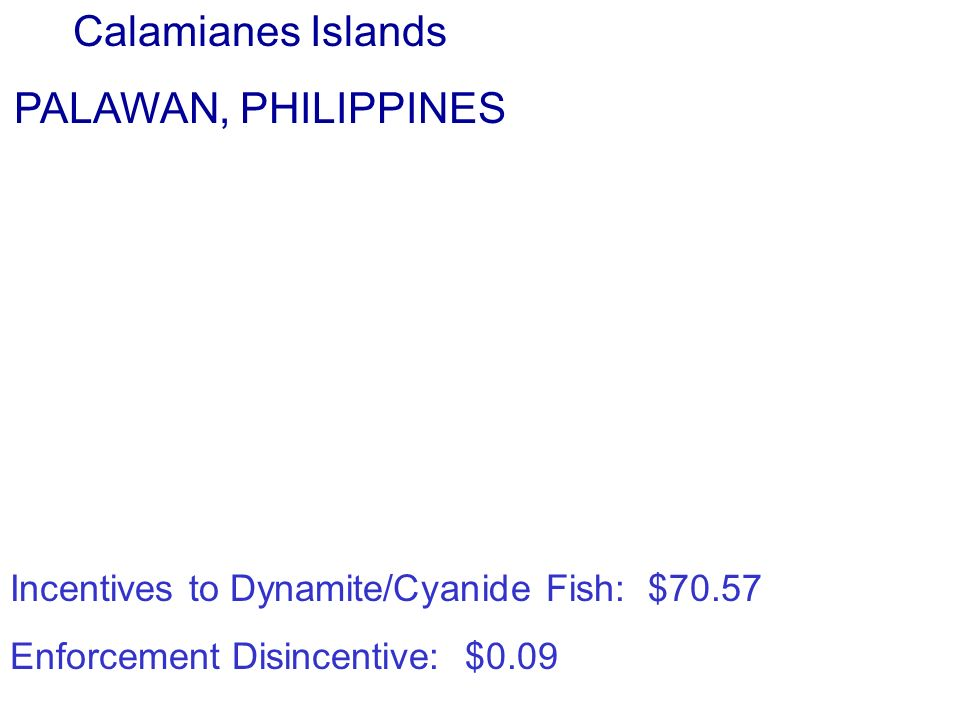 Calamianes Islands PALAWAN, PHILIPPINES Incentives to Dynamite/Cyanide Fish: $70.57 Enforcement Disincentive: $0.09 Calamianes Islands PALAWAN, PHILIPPINES