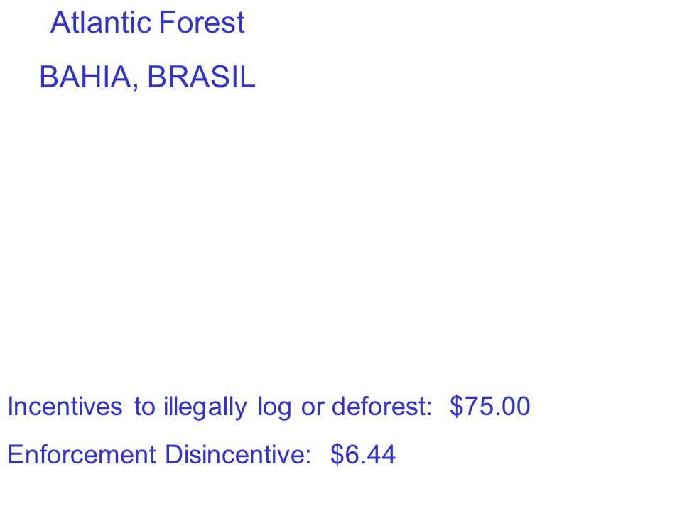 Incentives to illegally log or deforest: $75.00 Enforcement Disincentive: $6.44 Atlantic Forest BAHIA, BRASIL